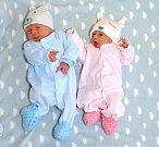 JAN A JANA HRINIKOVI. Dvojčata se narodila 16. října mamince Adéle z Moravské Třebové. Jan je o minutu starší. Měřil 2,8 kilogramu a vážil 46 centimetrů. Jana měřila 44 centimetrů a vážila 2,15 kilogramu.