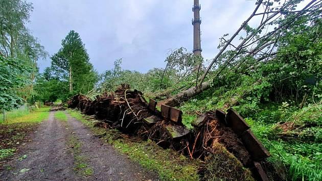 طوفان در سوویتوی نیز ماشه ای برجای گذاشت.