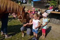 Ekologické vzdělávání pro děti připravují vSVČ Mozaika v Poličce