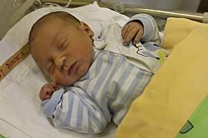 ŠIMONEK BINDER se narodil Pavlíně a Martinovi ze Svitav 11. února ve 14.49 hodin. Vážil 3,48 kilogramu a měřil 51 centimetrů.