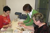 Na radnici ve Svitavách rozpečetili kasičky, do kterých vybírali koledníci příspěvky v rámci Tříkrálové sbírky.