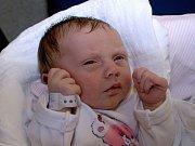LEONTÝNA NAVRÁTILOVÁ. Narodila se 6. března Zuzaně Kučerové a Josefu Navrátilovi z Hradce nad Svitavou. Měřila 49 centimetrů a vážila 3,1 kilogramu.