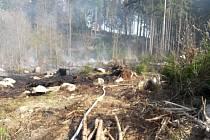 K požáru lesa v Bystrém vyjíždělo v sobotu 20. dubna v 14.55 hodin šest jednotek hasičů.  Jednalo se o plochu lesa o rozloze asi 50 x 100 m.