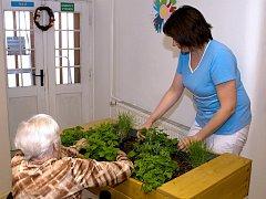 Zaměstnanci domovů pro seniory dokáží vymyslet pro klienty nejrůznější aktivity. Jen jich musí být dostatek.