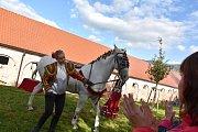 KLISNA ARWEN s trenérkou Sandrou Doležalovou se představila na přehlídce koní v Biskupicích u Jevíčka. Nejdříve jako šašek a poté v duchu krásné Carmen.