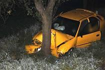 Řidička vybočila mimo komunikaci a narazila do stromu.
