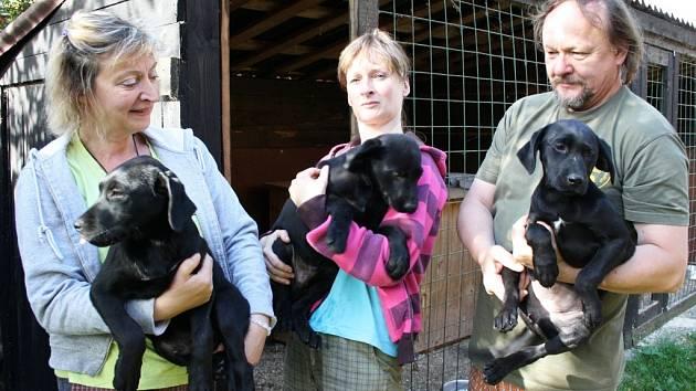 O tři krásné  chlupáče se rozrostla záchranná stanice Zelené Vendolí.