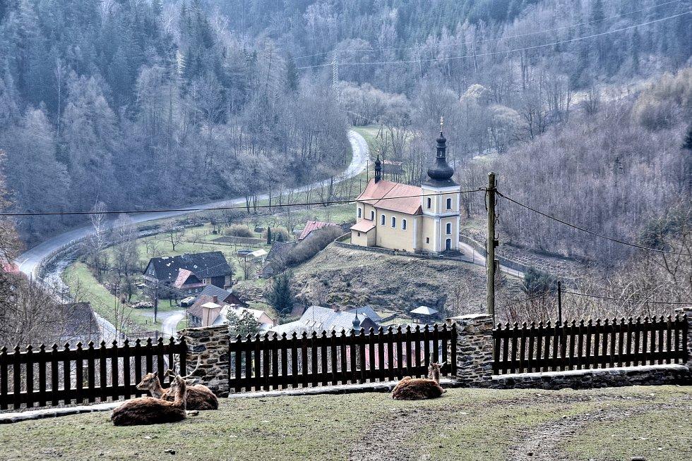 Hrad Svojanov - to není jen historie. V areálu najdou lidé i početný zvěřinec.
