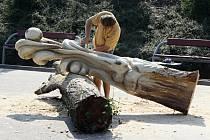 LIDSKÉ SMYSLY. Řezbáři na Svitavském stadionu tvarují ze dřeva zrak, čich, sluch i hmat.