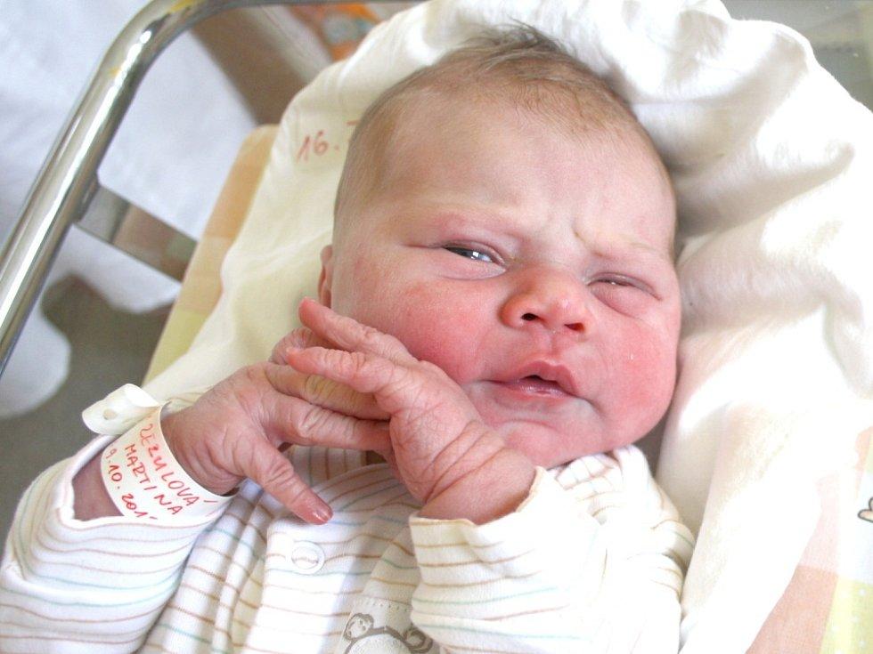 MARTINA ZEZULOVÁ. Holčička přišla na svět devátého října v 17.24 hodin. Vážila 3,6 kilogramu a měřila půl metru. S rodiči Pavlou a Romanem bydlí ve Svojanově u Moravské Třebové.