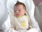 MICHAL LELEK. Přišel na svět 25. února v 6.27 hodin v Litomyšli. Vážil 3,25 kilogramu a měřil 48 centimetrů. S maminkou Danou a dvouletým bráškou Martinem bydlí v Chocni.