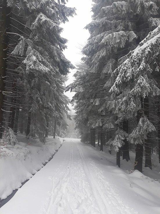 Běžkaři si užívají. Sněhu je v horách stále dost.