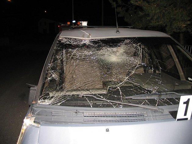 Hříbě srážku s automobilem nepřežilo.