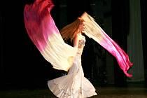 První ročník Orient Dance Show ve svitavské Fabrice.