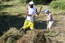 DAMAŠEK se stane na pár dní centrem dobrovolníků. V Pusté Rybné budou všichni společně uklízet chráněné louky, ale také si zahrají fotbal.