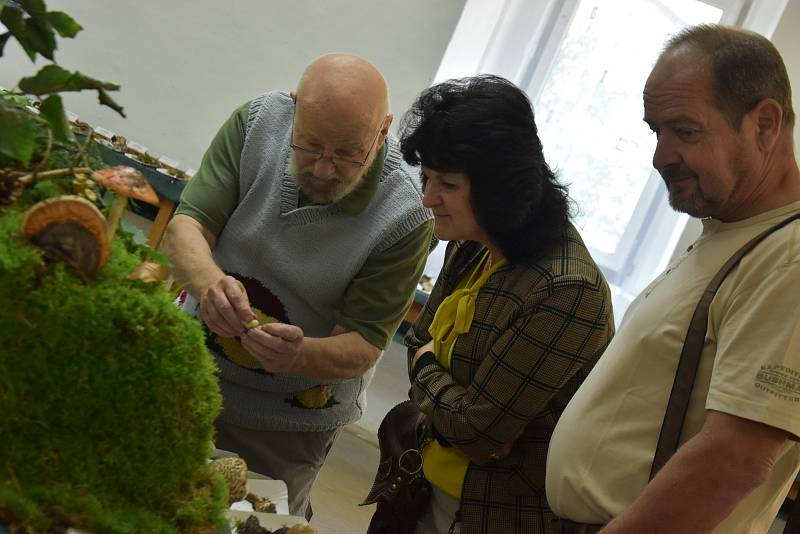 Mykologové z Dolního Újezdu vystavili desítky druhů hub a navařili houbové speciality.