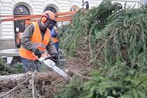 Kácení vánočního stromu ve Svitavách.