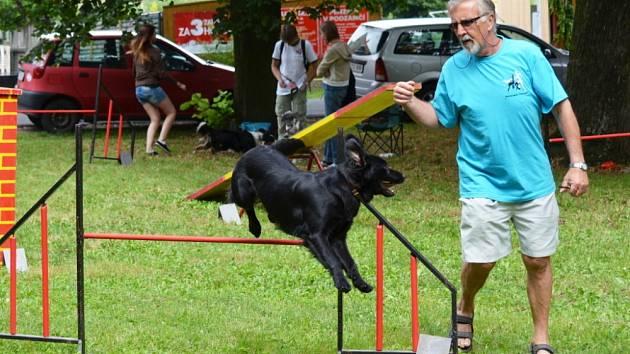 AGILITY je zábavný sport pro psy a jejich pány. Moravskotřebovský klub si v sobotu užil pěkné odpoledne.