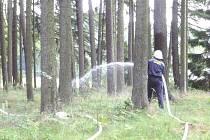 V sobotu se uskutečnilo v Rohozné cvičení dobrovolných hasičů.