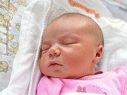 VIKTORIE HUBINKOVÁ. Narodila se 4. dubna Petře Hanákové a Milanu Hubinkovi z Litomyšle. Měřila 50 centimetrů a vážila 3,9 kilogramu. Má sourozence Davida,Filipa a Kateřinu.