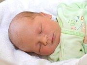 RICHARD LETFUS. Narodil se 1. září Veronice Zborovské a Radimu Letfusovi ze Svojanova. Měřil 52 centimetrů a vážil 3,6 kilogramu. Má bráchu Alexe.