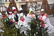 Tříkrálovou sbírku v Moravské Třebové zahájil v sobotu ráno průvod koledníků, v jejichž čele jel kočár s koňmi a Třemi králi.