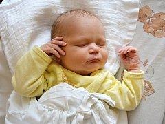 ANDREA KADLECOVÁ. Narodila se 29. února Petře a Petrovi z Lubné. Měřila 50 centimetrů a vážila 3,25 kilogramu. Má brášku Lukáše.