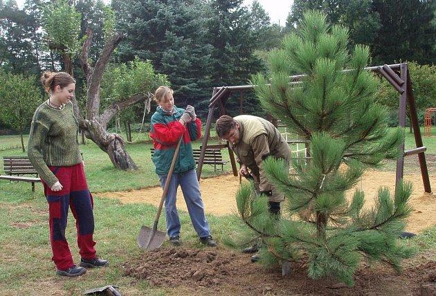 Na Krtkově zahradě vysázeli studenti zahradnické školy stromy.