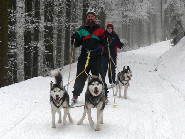 ZÁVODY psího spřežení s konají tento víkend v Čenkovicích.