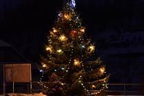 Vánoční strom v parčíku v Rohozné.