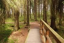 Stezka Vodárenským lesem se rozšíří.