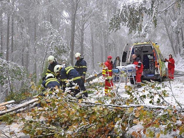 Předání pacienta na Hřebči. Sanity nemohly projet z důvodu popadaných stromů.