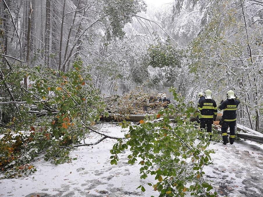 Popadané stromy komplikovaly dopravu na Hřebči.