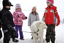 Děti ze školní družiny ze svitavské základní školy na náměstí prožily úžasné odpoledne se samojedy.