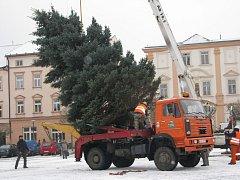 Vánoční strom putoval z Třebařova do Moravské Třebové. Dvanáctimetrový smrk pichlavý rozsvítí Moravskotřebovští v první adventní neděli