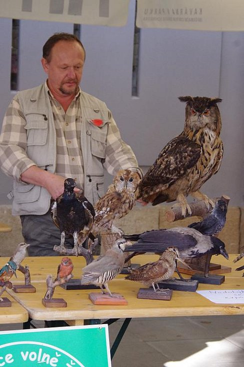 Oslava Světového dne zvířat. Voříškiáda i ukázka dravých ptáků.