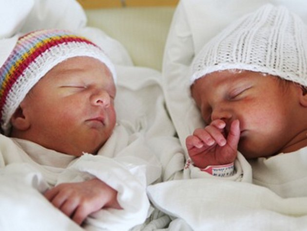 VOJTA A JAN DULKAJOVI. Dvojčata Dulkajovi se narodila 11. 4. v 10.39 a 10.38 hodin, a to s váhou 2,99 a 2,66 kg a mírou 48 a 46 cm. Rodiče Lenka a Jiří z Opatova mají už jedenáctiletého Jirku.