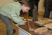 Výstava o dřevě ve Svitavách.