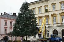 Vánoční strom brzy rozzáří svitavské náměstí