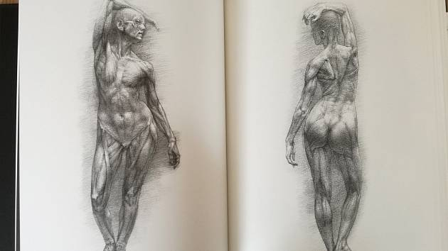 Nová kniha Výtvarná anatomie od Radka Petříčka.