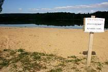 Řasy a sinice plavou po hladině svitavského rybníku Rosnička.