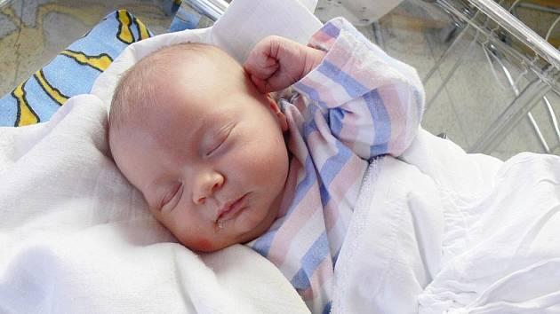 HEDVIKA MLYNÁŘOVÁ. Manželé Věra a Lukáš z Oldřiše mají od 22. listopadu druhou dceru. Ve svitavské porodnici jí naměřili 50 centimetrů a navážili 3,75 kilogramu. Doma se na sestřičku těší tříletá Karolínka.