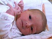 LEA PŘIBYLOVÁ. Narodila se 15. března Adrianě a Markovi ze Svitav. Měřila 50 centimetrů a vážila 3,55 kilogramu.