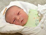 PETR HOLUB. Narodil se 28. května Monice a Pavlovi z Litomyšle. Měřil 50 centimetrů a vážil 3,91 kilogramu. Má sourozence Karolínu a Jana.