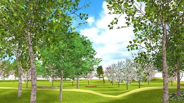Park patriotů vznikne na neupraveném prostranství mezi Svitavským stadionem a Vodárenským lesem. Svitavané kupují stromy a keře do parku