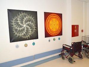 V prostorách Svitavské nemocnice můžete až do konce března obdivovat tvorbu mladých umělců z uskupení Follow The Art.