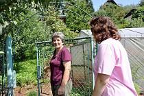 Dvořákovi ale už na zahradu skoro nejezdí. Bojí se napadání sousedů a vadí jim také rachot, který od sousedů vychází.