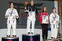 Velmi kvalitní výkony ve všech zápasech vynesly litomyšlské Anně Kašparové překvapivé, ale zasloužené stříbro.