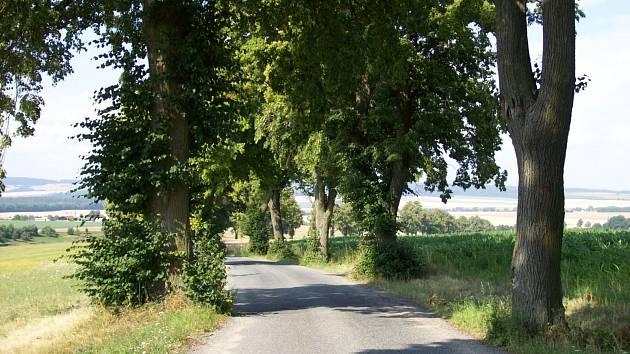 Silnice vedoucí do Kamenné Horky.