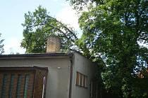 Na jídelnu základní školy na ulici T.G. Masaryka spadla silná větev.